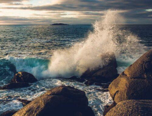Resilienz – Das Geheimnis der inneren Stärke. Onlineseminar, 6. Februar 2021